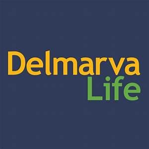 https://michelechynoweth.com/wp-content/uploads/2019/03/delmarva-life.jpg